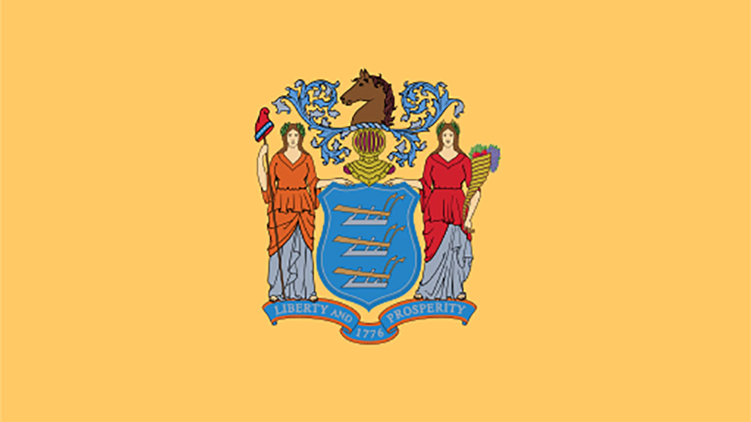 new jersey state flag army veteran