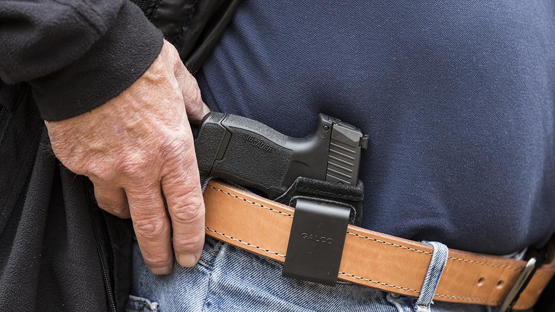 sig p365 pistol holster