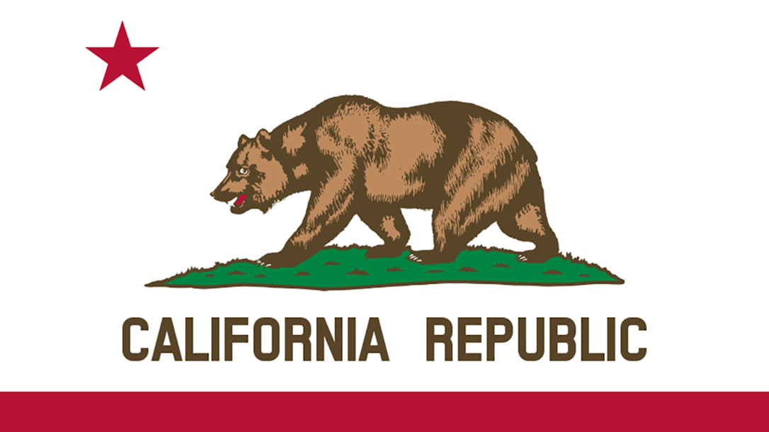 bullet button california flag