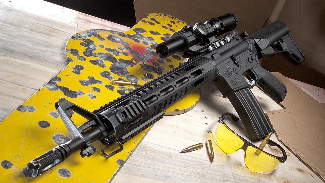 2018 rifles, rifles