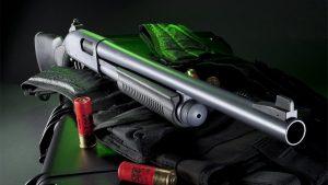 shotgun, shotguns, birdshot shotgun, michigan homeowner
