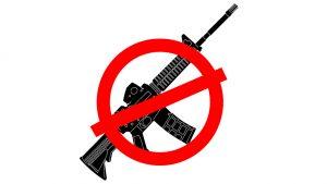 Florida Gun Law