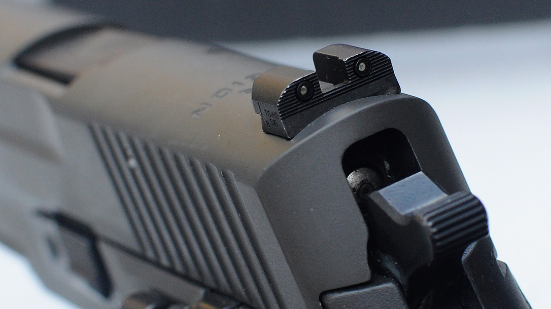 Sig Sauer P229 Legion, Rear Sights
