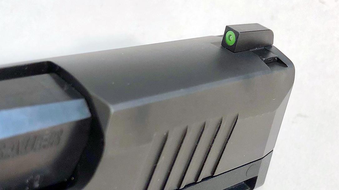 SIG P365 Ammo, sights