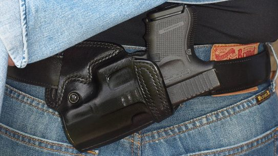 Constitutional Carry Bills