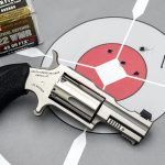 North American Arms Bug II, Hornady, Target