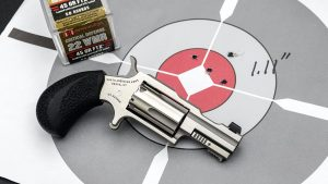 North American Arms Bug II, Hornady, Target
