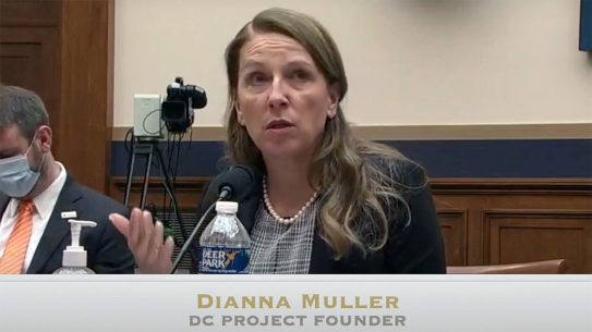 Dianna Muller testified before Senate Judiciary Gun Violence hearing.
