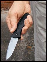 handgun-hide2.jpg
