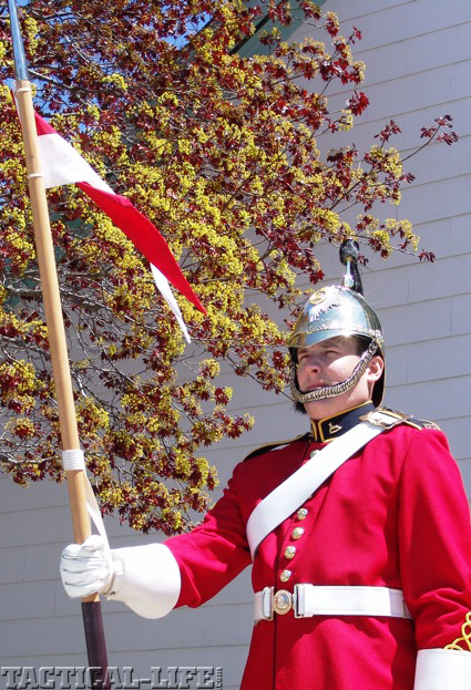 canadian-army-dragoon-copy-copy