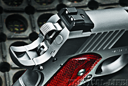 para-usa-gun-rights-45-acp-b