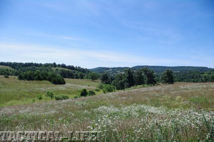 wilson-combat-rolling-hills
