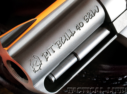 charter-arms-pitbull-40-sw