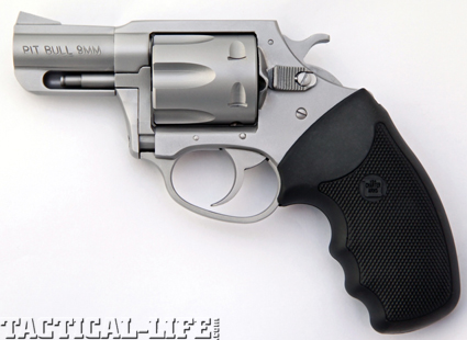 9mm-pitbull-july-2012-photo-copy