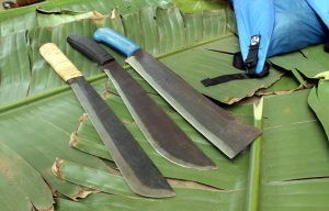 Filipino Bolo Knife