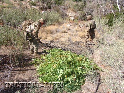 LA County Marijuana Eradication Team