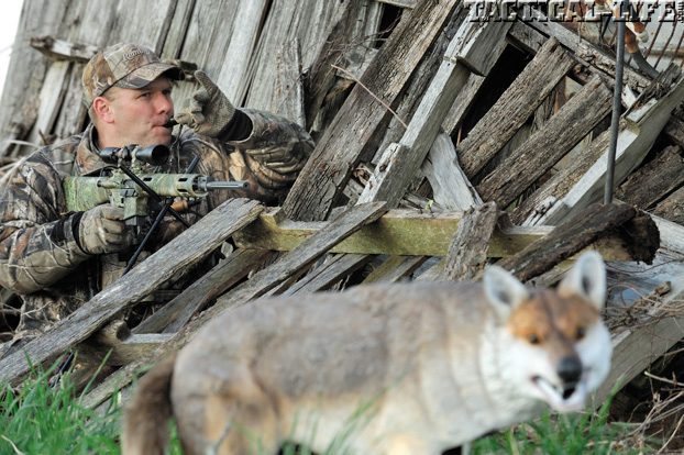 AR Hunting Strategies Stabilize