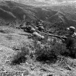 M1 Garand Military