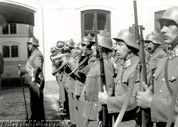 Steyr M.95 Austrian Soldiers