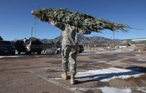 "New York Army National Guard Soldiers shipped Christmas trees to military families as part of the ""Trees for Troops"" program."
