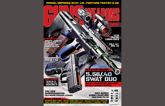 Guns & Weapons for Law Enforcement January 2013