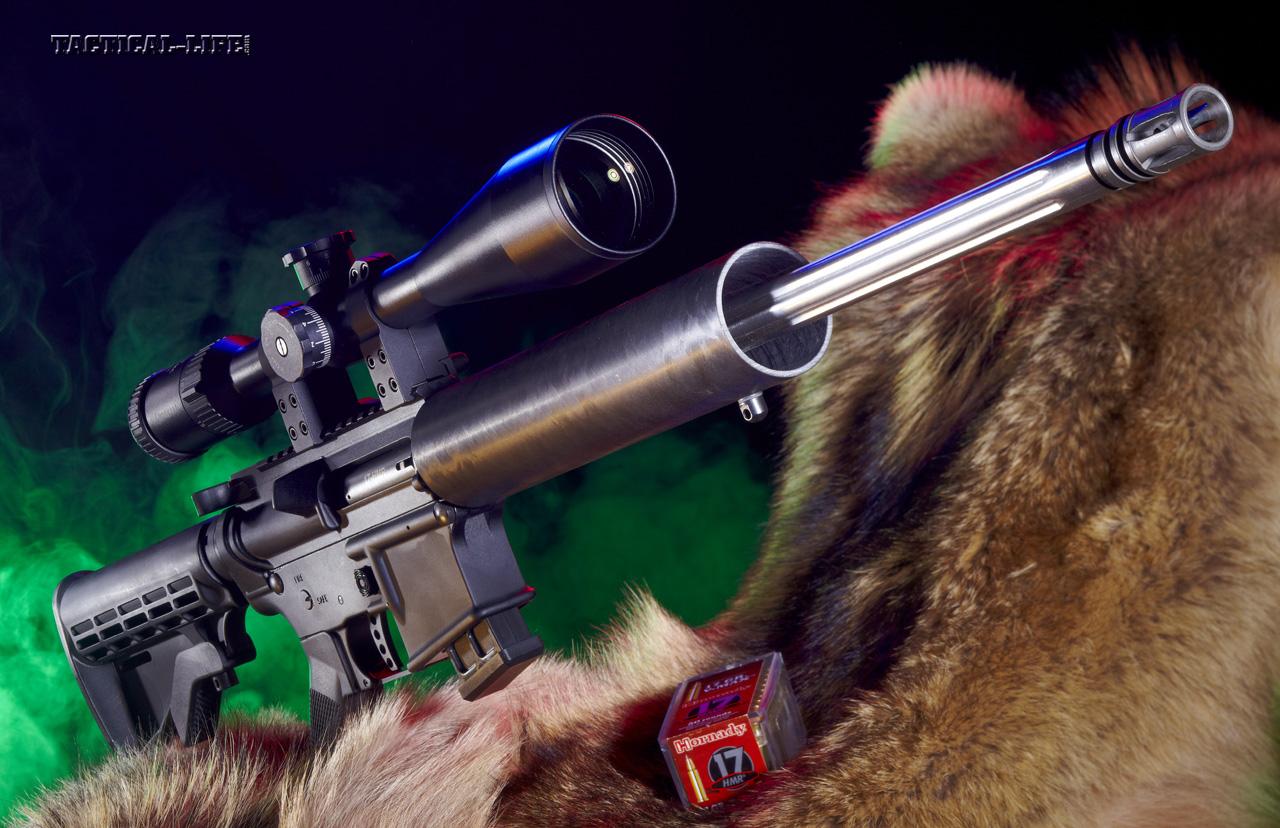 Top 10 ARs - Alexander Arms .17 HMR