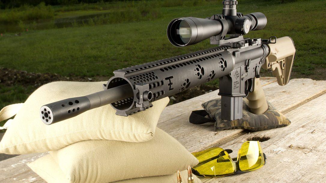 Top 10 ARs - RRA Fred Eichler Predator