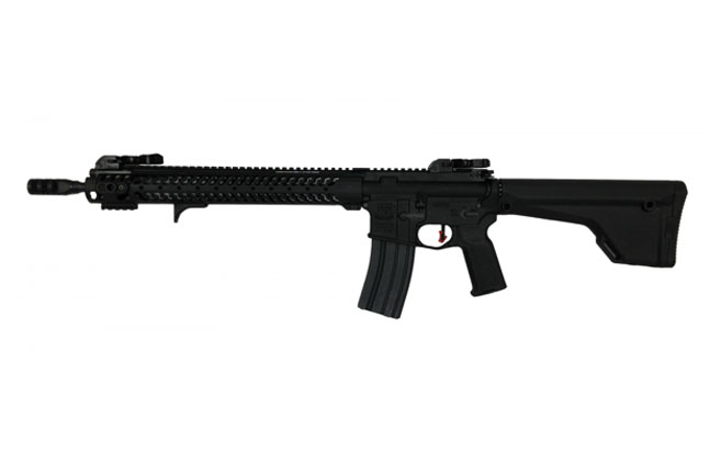 Top 25 AR Rifles For 2014 | Adams Arms COR Ultra Lite with Diamondhead D-45 Sights