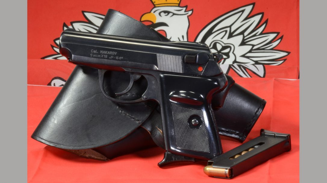 Preview- Polish P-64 9x18mm Pistol