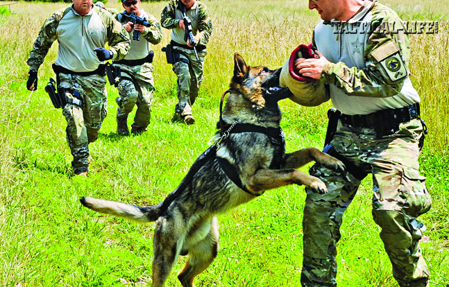 "SERT operators practice using their capable K9, ""Ex,"" to apprehend a suspect, played by a fellow team member."