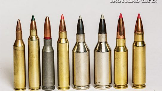 "Today's rifle ammunition manufacturers are coming on strong with a spectrum of ""others"" to feed your AR-15 rifles. From left to right: The .17 Remington, .204 Ruger, 5.45x39mm, .223 Remington, .223 Winchester Super Short Magnum (WSSM), .243 WSSM, 6.5 Grendel & 6.8 SPC."