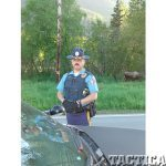 Alaska State Troopers moose