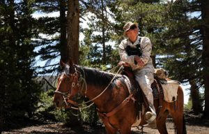Marines horseback training
