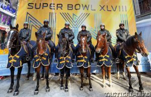 Super Bowl horses lead