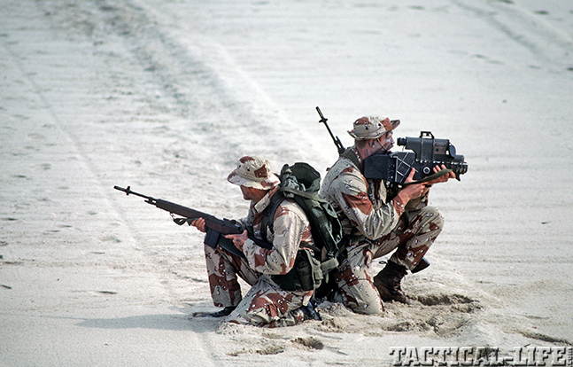 U.S. M14 Battle Rifle desert