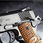 KIMBER ULTRA RAPTOR II controls