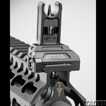 Custom AR BG2015 sights