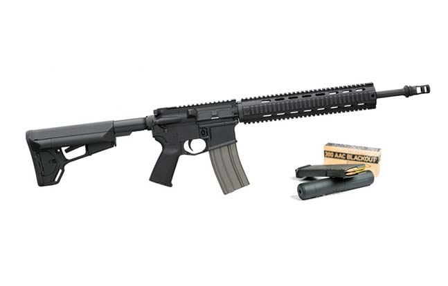Bushmaster AAC 300 Blackout evergreen revamp