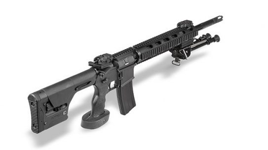 DPMS BG 2015 LRT-SASS right high