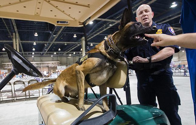 Harrisburg Police K-9