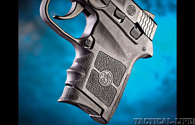 M&P Bodyguard 380 GWLE Oct grip