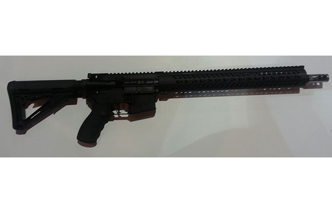 NASGW roundup Del-Ton 3-Gun Entry Level Rifle