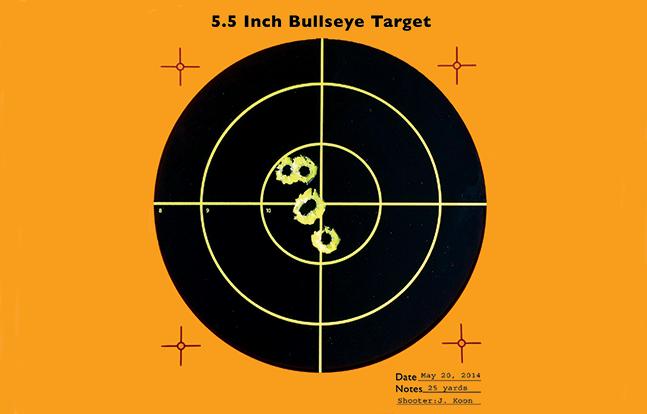 HK VP9 SWMP Jan target