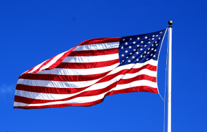 Veterans Day 2014 flag