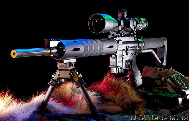 Windham Weaponry VEX SS AR 2015 lead