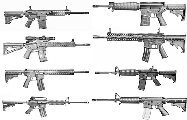 AR Rifleman's Buyer's Guide: Today's Top Sporting Rifles