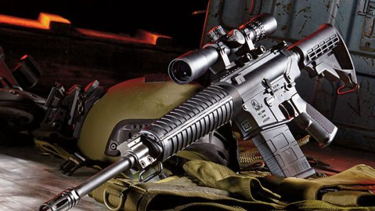 Armalite DSR 10 SWMP Jan 2015 lead