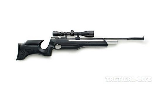 Chiappa Firearms AR611 Air Rifle