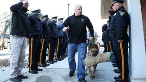 K-9 Judge West Deptford Police Department