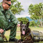 Vested Interest in K9s Police Dogs GWLE April 2015 handler